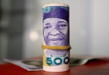 Nigeria's Local Currency Stabilises on Foreign Currency Inflow