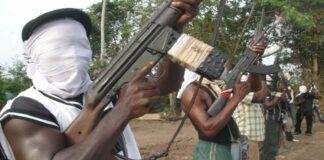 Gunmen Kidnap Ekiti Traditional Ruler — Police