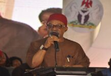Ngige urges Nigerians to unite against insecurity, corruption