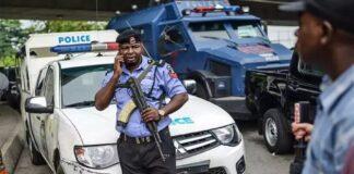 Police neutralise 3 bandits, recover 330 stolen animals in Katsina State – PPRO