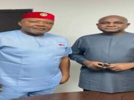 Anambra governorship: Moghalu urges electorate to vote ADC candidate